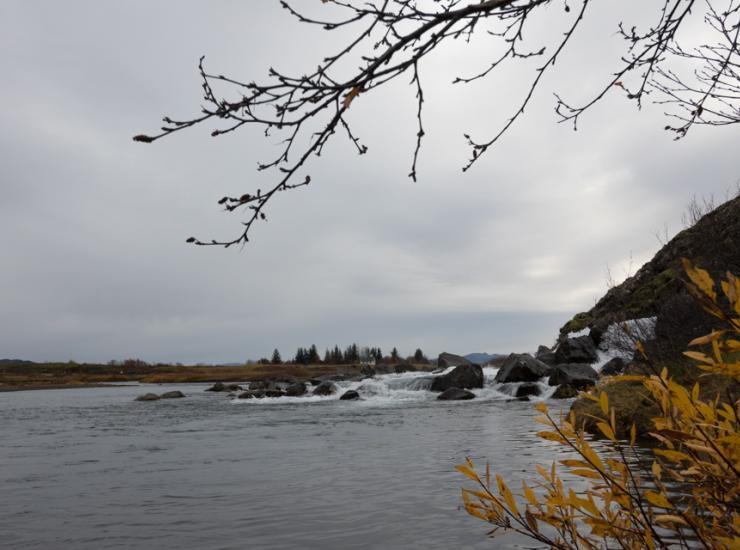 Flow : Þingvellir